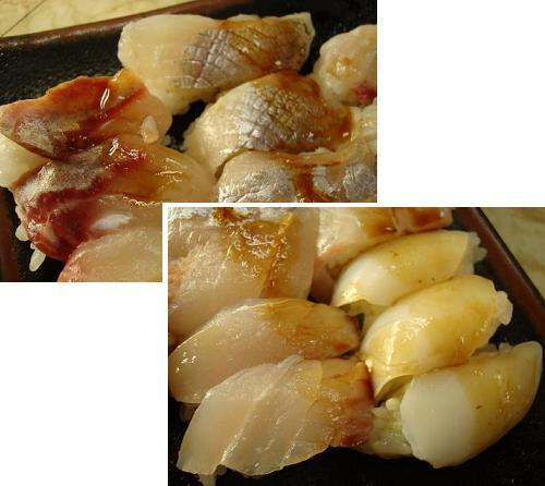 ハマチ・太刀魚・イカ